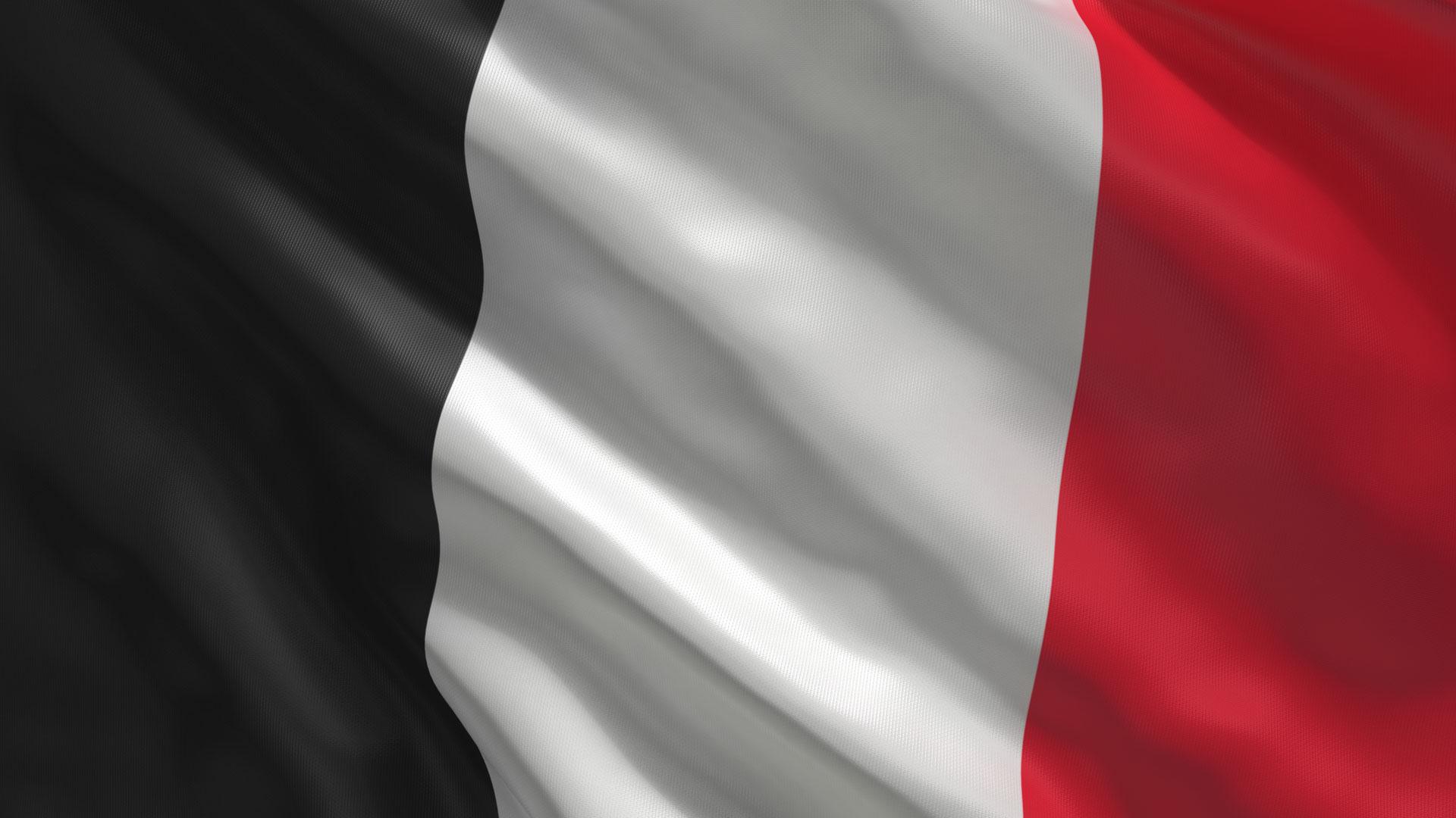 flaga_leocji